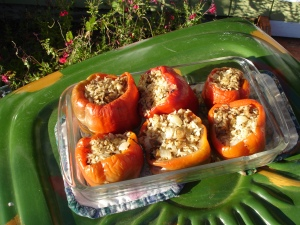 Stuffed bell peppers cooking with the sun - a summer favorite!