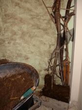 tree base 4